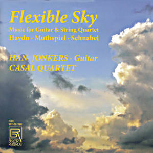Flexible Sky, Music for Guitar & Strings / Bayer Records
